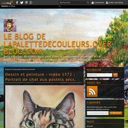 vidéo 1572 : Portrait de chat aux pastels secs.