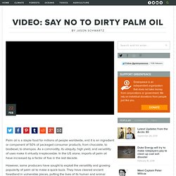 VIDEO: Say no to dirty palm oil