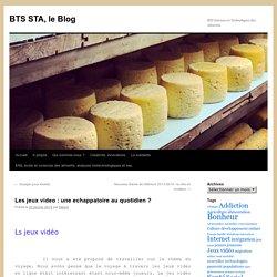 BTS STA, le Blog » Les jeux video: une echappatoire au quotidien?