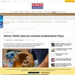 VIDEO. L'expo événement sur Neandertal ouvre au Musée de l'Homme