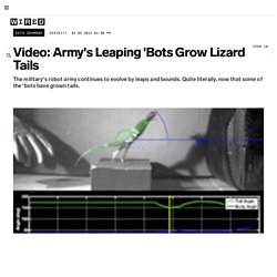 Video: Army's Leaping 'Bots Grow Lizard Tails | Danger Room