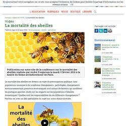 Vidéo - La mortalité des abeilles