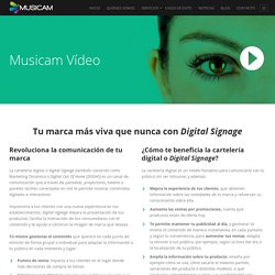 Vídeo – Musicam