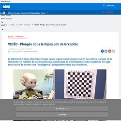 20/11/17 - VIDÉO - Plongée dans le Gipsa Lab de Grenoble