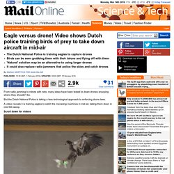 Video shows Dutch police training the birds of prey to take down drones in mid-air