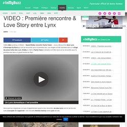 VIDEO : Première rencontre & Love Story entre Lynx
