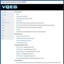 Video Quality Experts Group (VQEG)