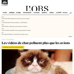 Les vidéos de chat polluent plus que les avions