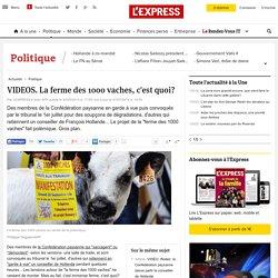 AFP 30/05/14 VIDEOS. La ferme des 1000 vaches, c'est quoi?