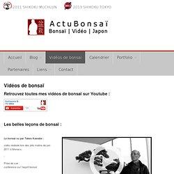 videos de bonsai sur Youtube - actubonsaiActuBonsaï