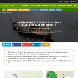 Vietnam sweats bullets as China and Laos dam the Mekong