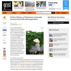 En Nouvelle-Orléans, une communauté vietnamienne rebondit avec l'agriculture urbaine