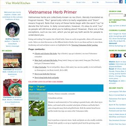 Vietnamese Herb Primer - Viet World Kitchen