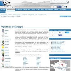 VIGNOBLE DE LA CHAMPAGNE : Vins de la Champagne