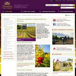 Vignobles et decouvertes en Touraine : pour un week-end au vignoble !
