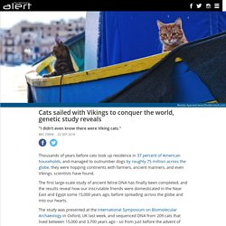 Cats sailed with Vikings to conquer the world, genetic study reveals