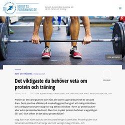Det viktigaste du behöver veta om protein och träning