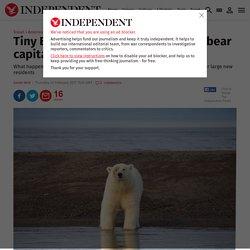 Tiny Eskimo village becomes 'polar bear capital of United States'