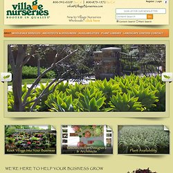 Village Nurseries