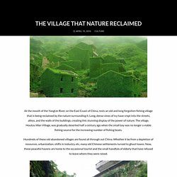 The Village That Nature Reclaimed
