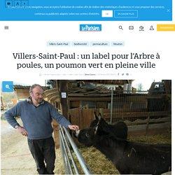Villers-Saint-Paul : un label pour l'Arbre à poules, un poumon vert en pleine ville - Le Parisien