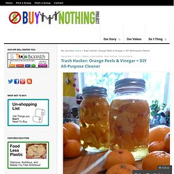 Orange Peels & Vinegar = DIY All-Purpose Cleaner | Buy Nothing Project