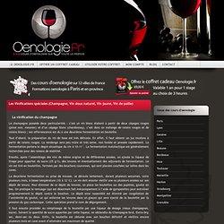 Les Vinifications spéciales (Champagne, Vin doux naturel, Vin jaune, Vin de paille)