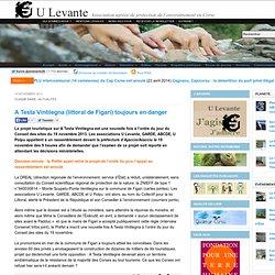 A Testa Vintilegna (littoral de Figari) toujours en danger