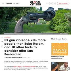 US gun violence kills more people than Boko Haram, and 10 other facts to consider after San Bernardino