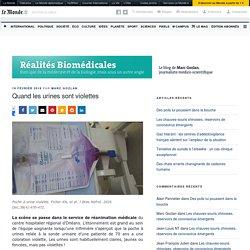 Quand les urines sont violettes – Réalités Biomédicales