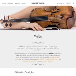 Tout ce que vous devez savoir sur le violon