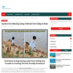 Top Most Viral Video Dog Saving A little Girl Form Falling In Water