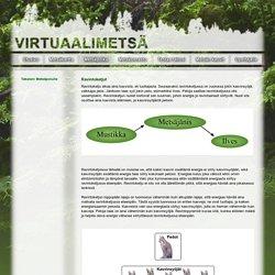 Virtuaalimetsä – Metsäpolku