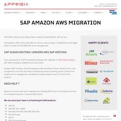 SAP Virtualization Of Your SAP Landscape