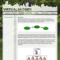 Virtualskogen - Skogsstigen