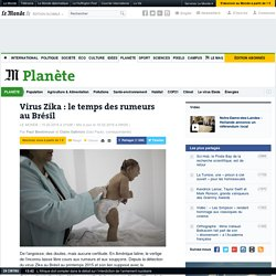 Virus Zika: le temps des rumeurs au Brésil