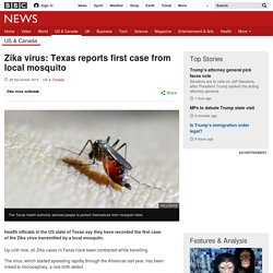 Zika virus: Texas reports first case from local mosquito