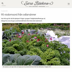 95 visdomsord från odlarvänner - Sara Bäckmo