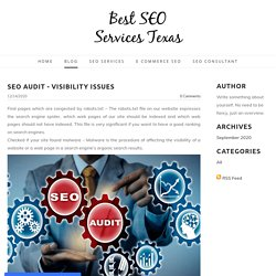 SEO Audit - Visibility Issues - Best SEO Services Texas