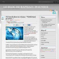 """Vis ma vie dans un réseau : """"Visiblement ça rame…"""" » Le blog de Raphael Maunier"""