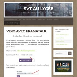 Visio avec framatalk – SVT au lycée