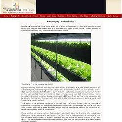 "Visit Beijing ""plant factory"" - eBeijing.gov.cn"