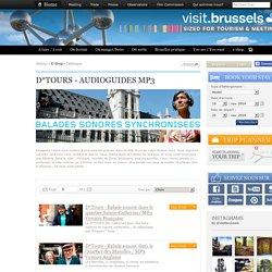 le site officiel du bureau du tourisme et du mice de Bruxelles.