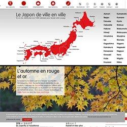 Visiter le Japon:Tourisme, culture et bons plans