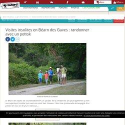 Visites insolites en Béarn des Gaves : randonner avec un pottok