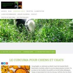 LE CURCUMA POUR CHIENS ET CHATS - Site de vismedicatrixnaturae ! La nature est guerisseuse - Remedes naturels pour chiens et chats