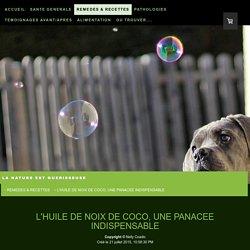 L'HUILE DE NOIX DE COCO, UNE PANACEE INDISPENSABLE - Site de vismedicatrixnaturae ! La nature est guerisseuse - Remedes naturels pour chiens et chats