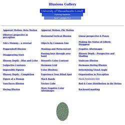 Visual Illusions Gallery : Index