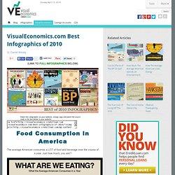 Best Infographics of 2010 - VisualEconomics.com