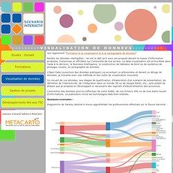 Visualisation et cartographie de données. Formation, étude, conseil. Scénario Interactif, à Toulouse et en Midi-Pyrénées.